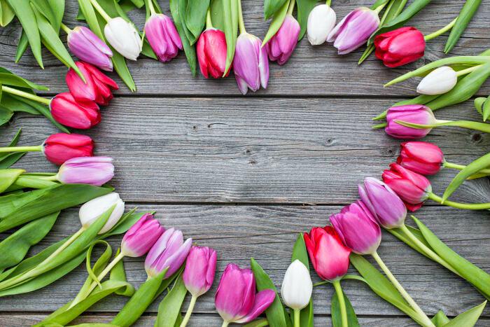 8 marca Dzień Kobiet